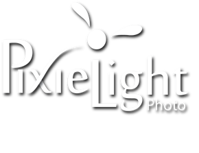 Pixie Light Photography